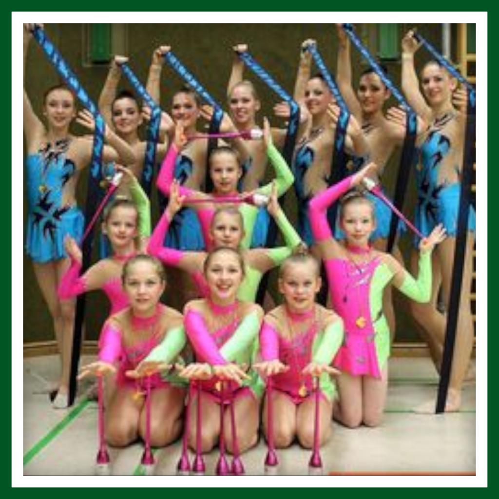 RSG Landesmeisterschaften 2015