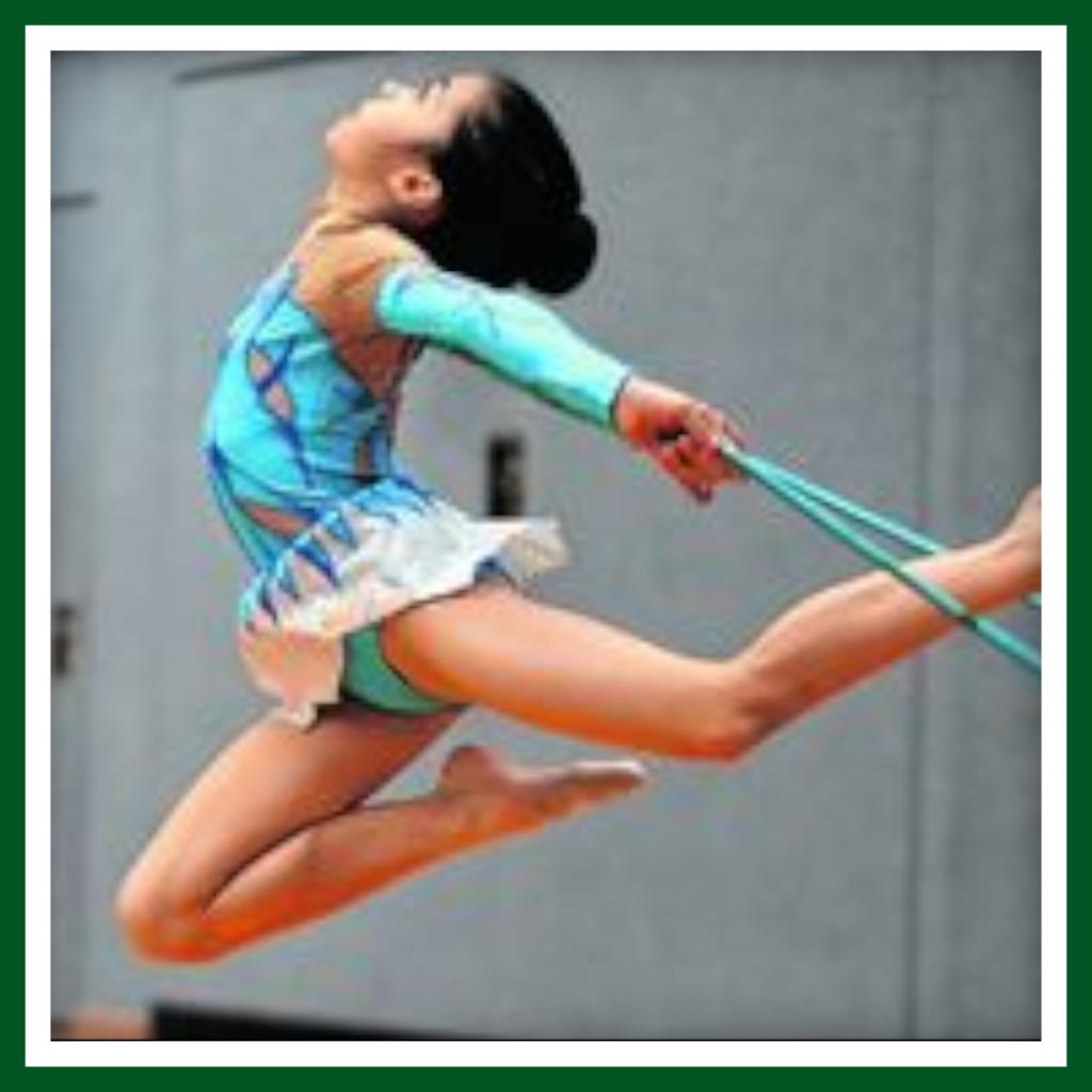 RSG Landesmeisterschaften 2017