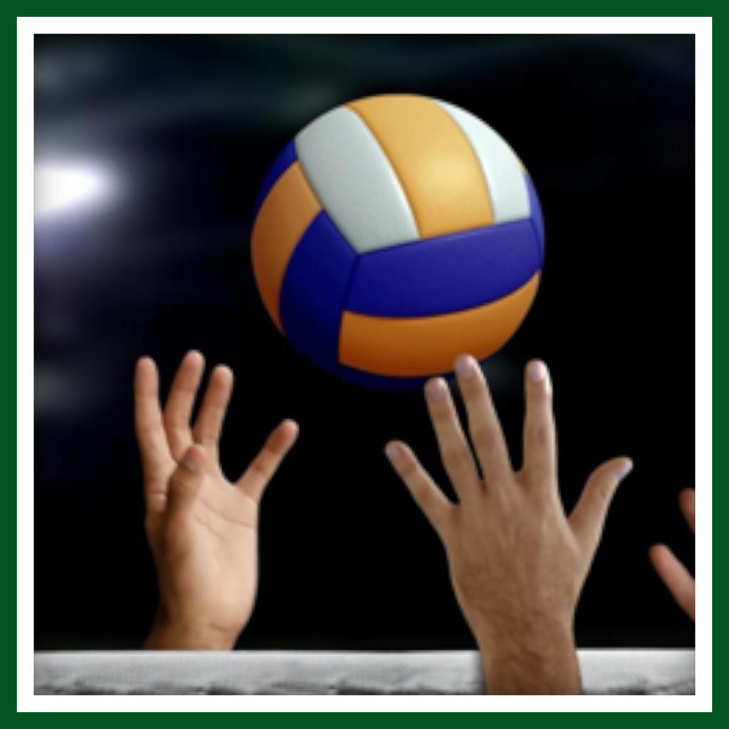 Volleyball Aufstieg Frauen 2016